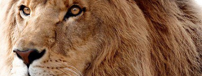 OS X Lion 10.7.4 build 11E27 agli sviluppatori