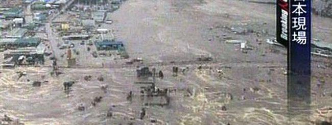 Giappone, il terremoto scuote il Web