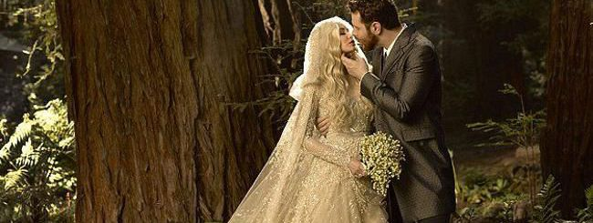 Il matrimonio e lo scempio di Sean Parker