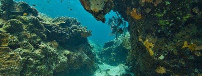 Seaview: Street View anche sott'acqua