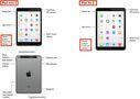 iPad Air 2 + iPad mini 3