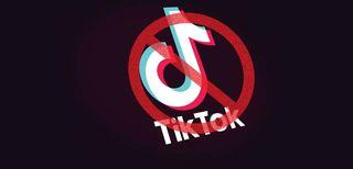 TikTok, bloccato l'uso dei dati dei minori in Italia