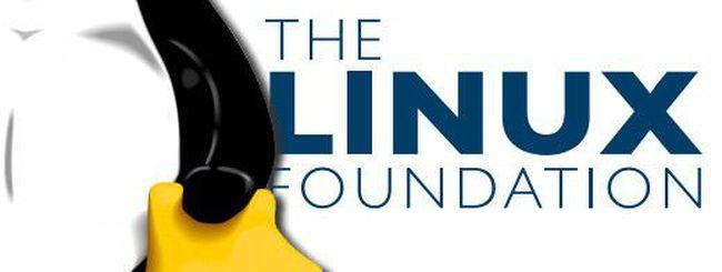 Il passo del pinguino