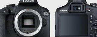 Canon EOS 2000D, le immagini della reflex
