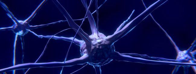 Creati i primi neuroni artificiali