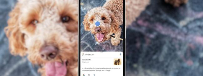 Google Lens disponibile sul Play Store