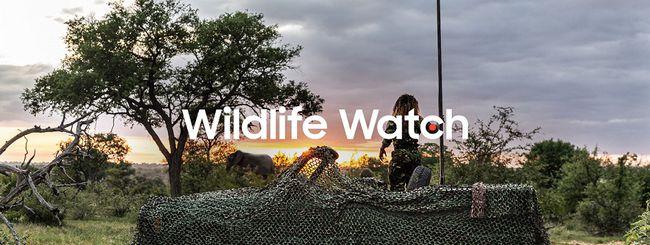 Samsung lancia Wildlife Watch, progetto di ranger virtuali contro il bracconaggio