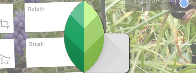 Snapseed migliora gestione dei RAW e interfaccia