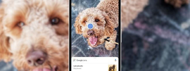 Google Lens arriva sull'app Google per iOS