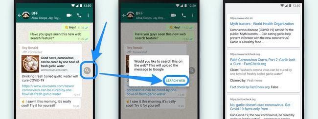 WhatsApp, verificare le fakenews su iPhone