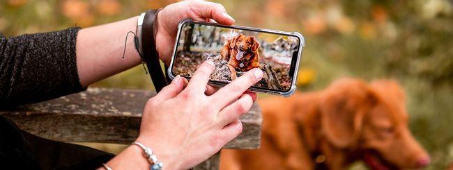 iOS 13 riconosce cani e gatti